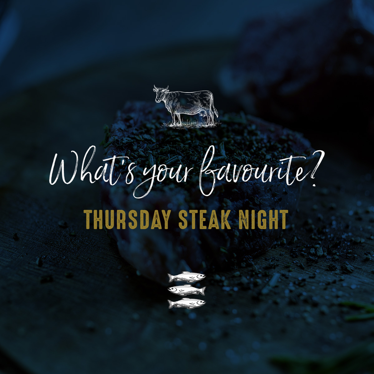 steaknight-image1